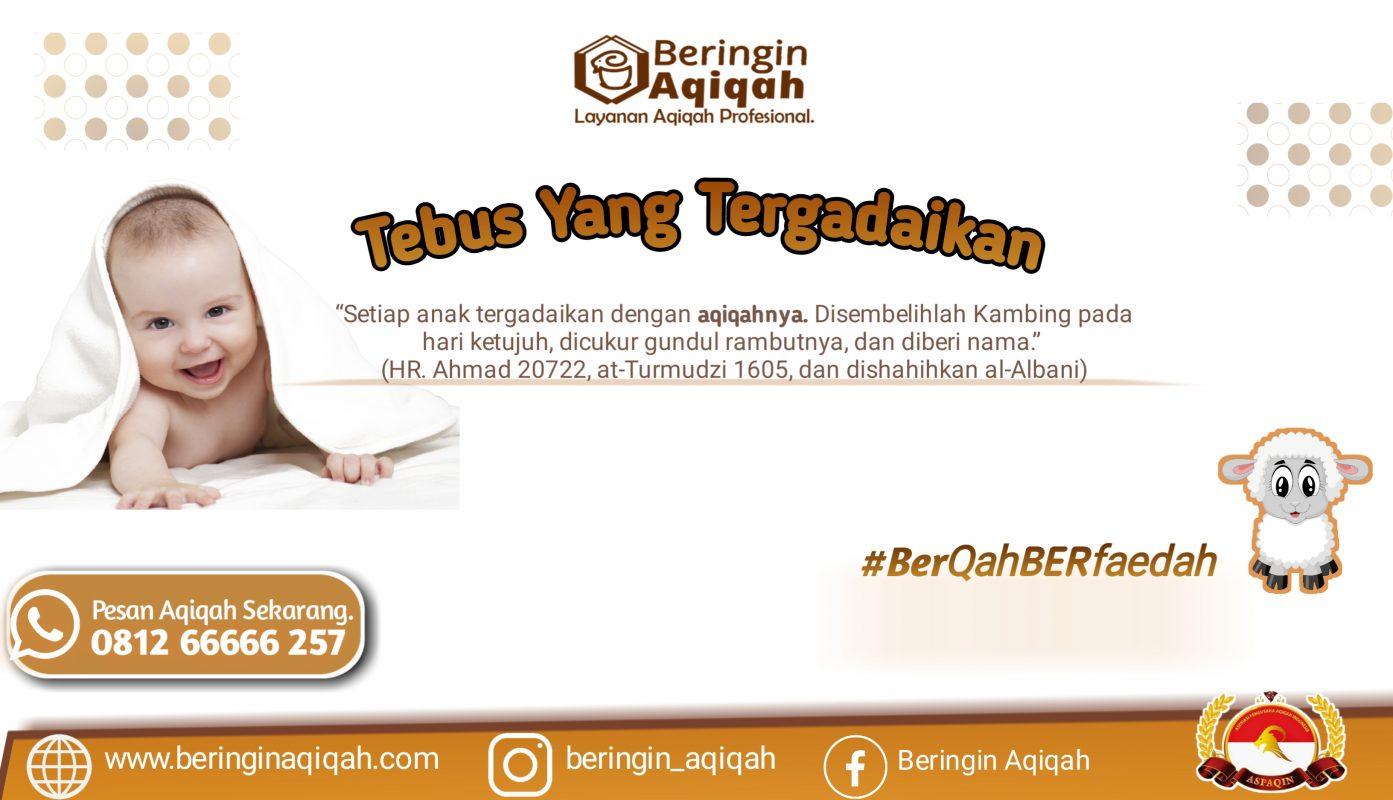 Aqiqah Di Medan Aqiqah Siap Saji mEdan aqiqah terbaik medan